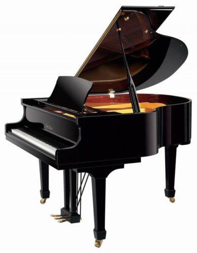Kuyruklu Akustik Grand Piyano.