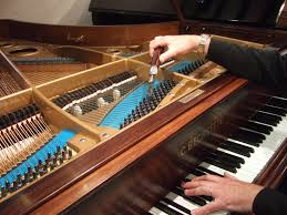 Akustik Piyanoyu  Akort eden piyanocu