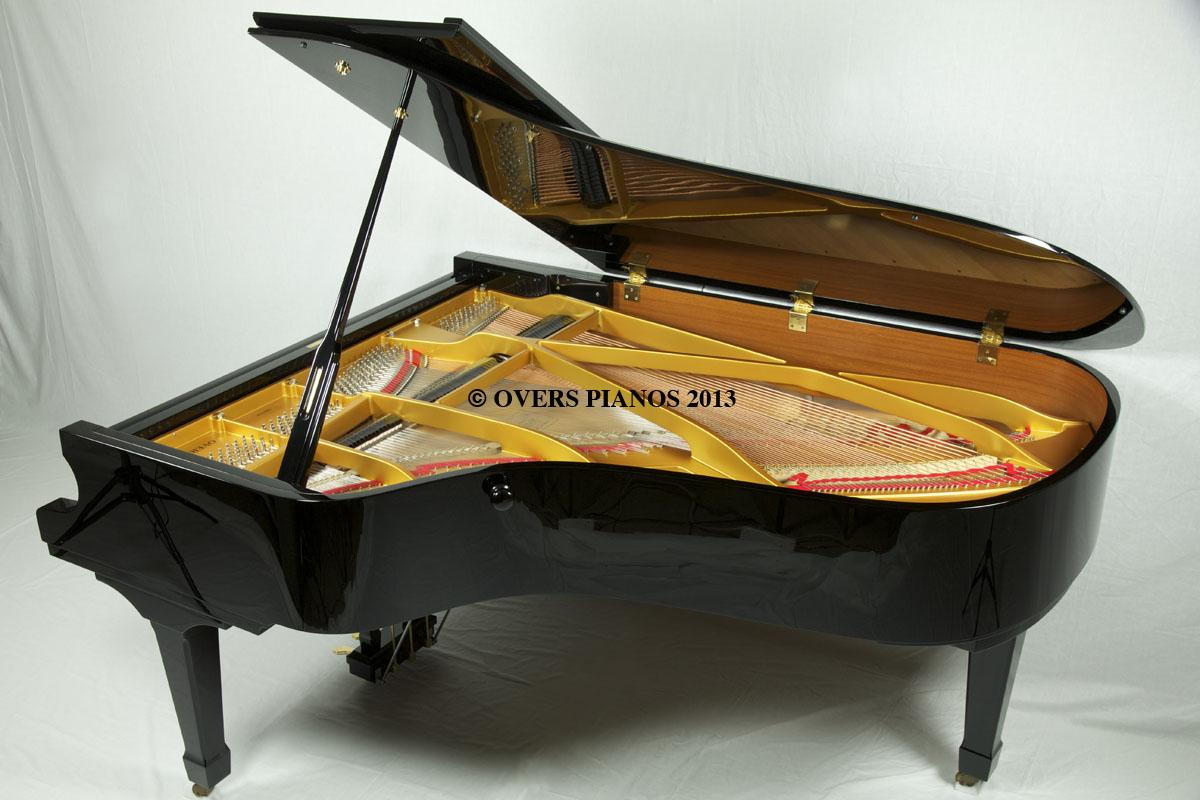 Kuyruklu Piyano Ana Grand Music Klasik Müzikler Tablo Hakkında Bilgiler Çalgı Enstrüman Ev Oda Çal Nedir Bilgi Sözlük Pianist Piyanolar Konser Dinle