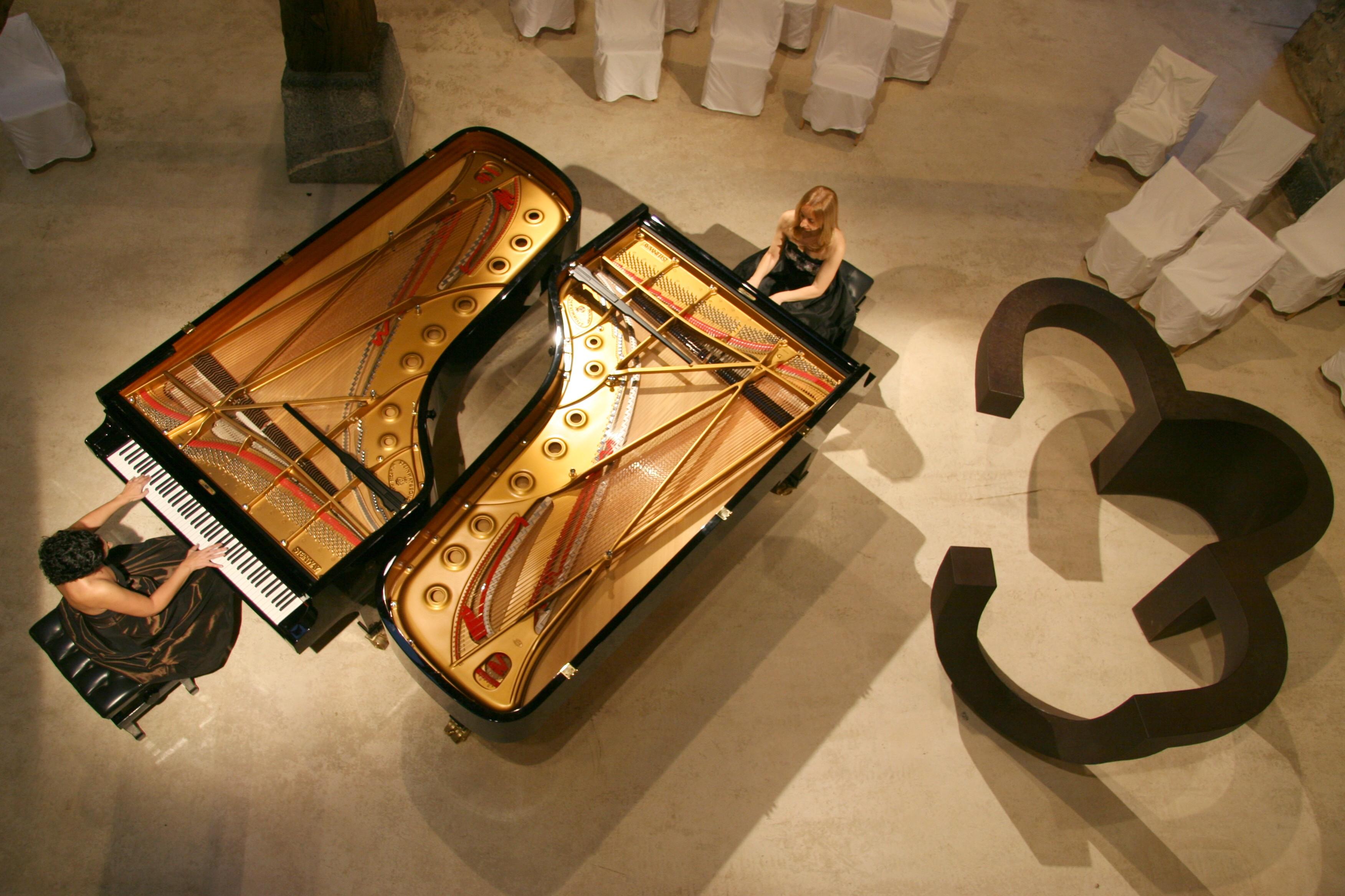 PİYANO AKORT SORUNU Grand Kuyruklu Piyano Tepeden Teller Görünüş Büyük Ana Konser Piyanosu Piano Solo Pianist Music Müzik Aletleri