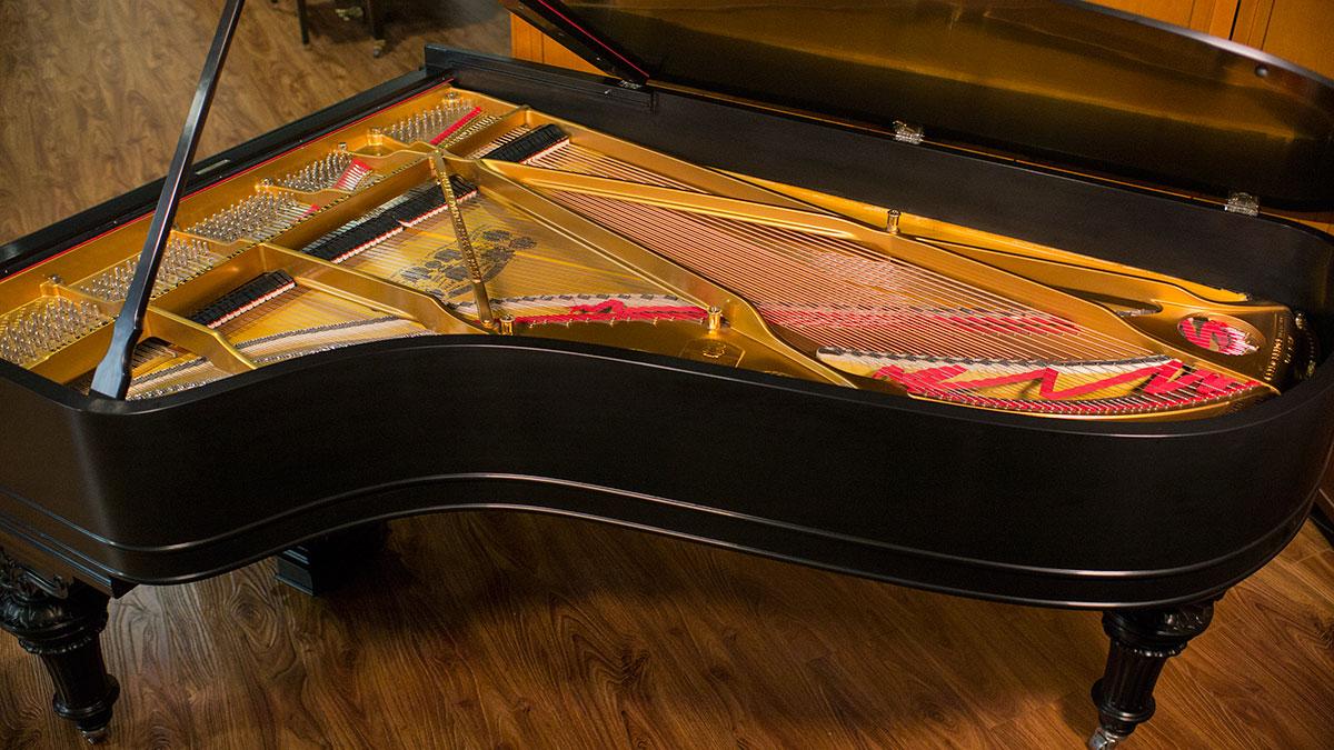 PİYANO BAKIM FİYATLARI Grand Kuyruklu Piyano Tepeden Teller Görünüş Büyük Ana Konser Piyanosu çalgısı Enstrümanlar Bilgi Tel üst Bakış